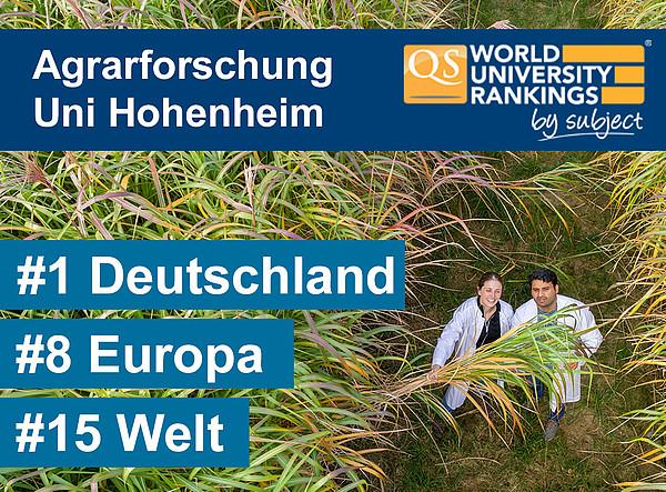 Hohenheim Online